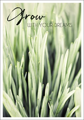 Postkarte Grow with your Dreams